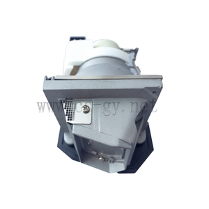 compatible replacement projector lamp BL-FP230D / SP.8EG01GC01 P-VIP 230/0.8 E20.8 for OPTOMA projector HD20 / HD22 / HD200X